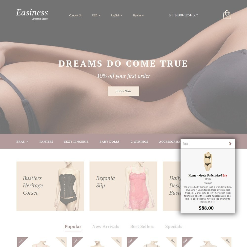 theme - Moda y Calzado - Easiness - Lingerie Store - 5