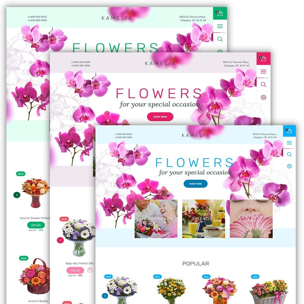theme - Gifts, Flowers & Celebrations - Kamelia - 2
