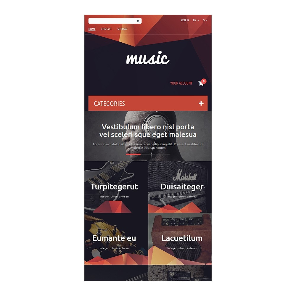 theme - Kunst & Cultuur - Music Store - 8