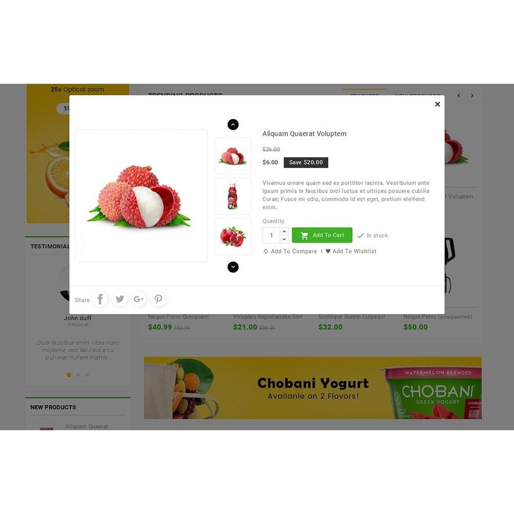 theme - Alimentation & Restauration - Grocery Food Mega Store - 9