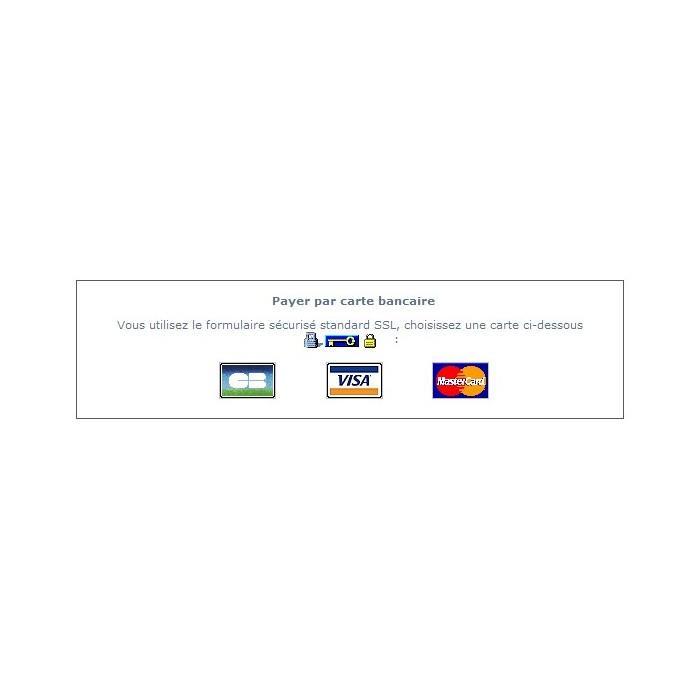 module - Оплата банковской картой или с помощью электронного кошелька - Société Générale Worldline SIPS (Sogenactif) - 4