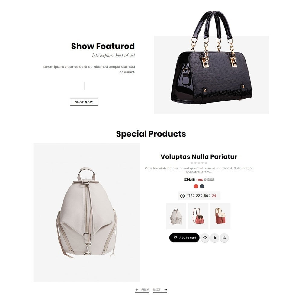 Bravo Bags - Fashion Apparel