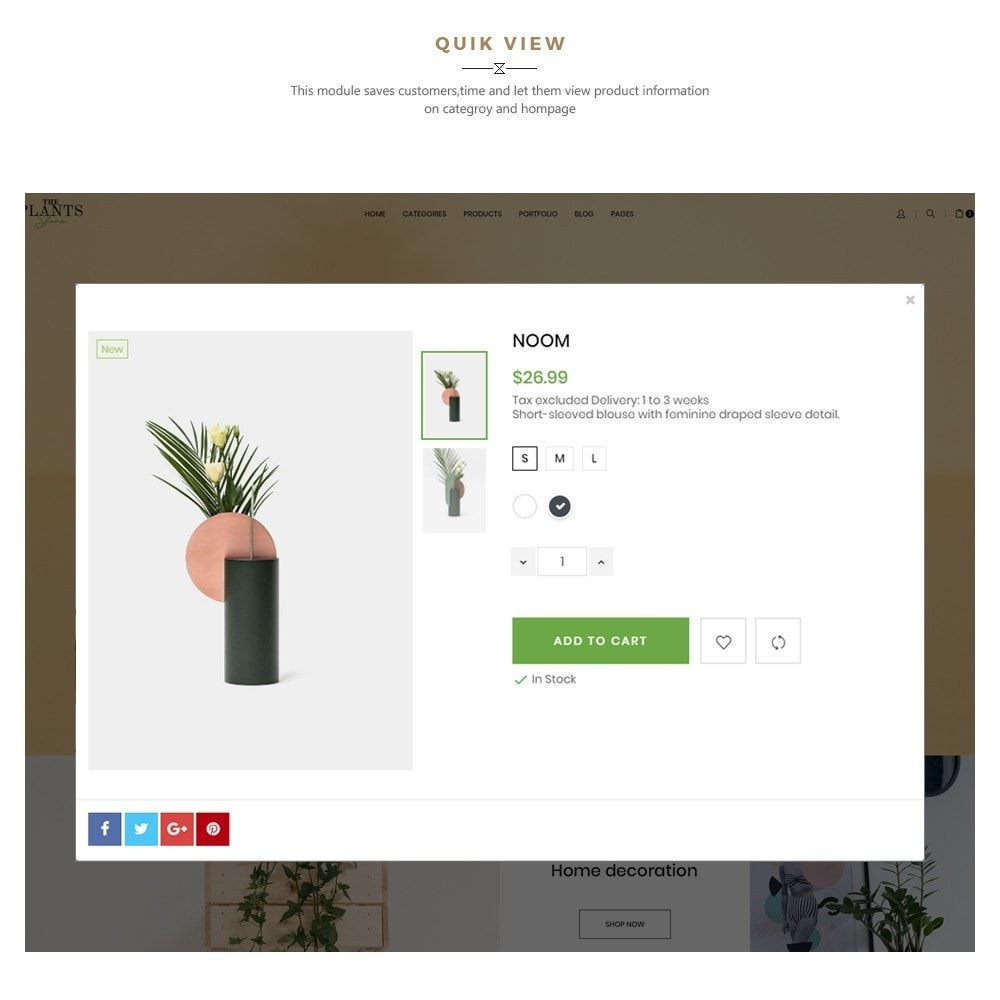 theme - Home & Garden - Plant Store - Gardening & Houseplants - 7