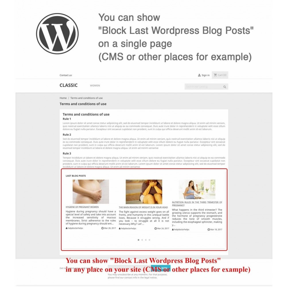 module - Blog, Forum & Actualités - Block Last Wordpress Blog Posts - 4