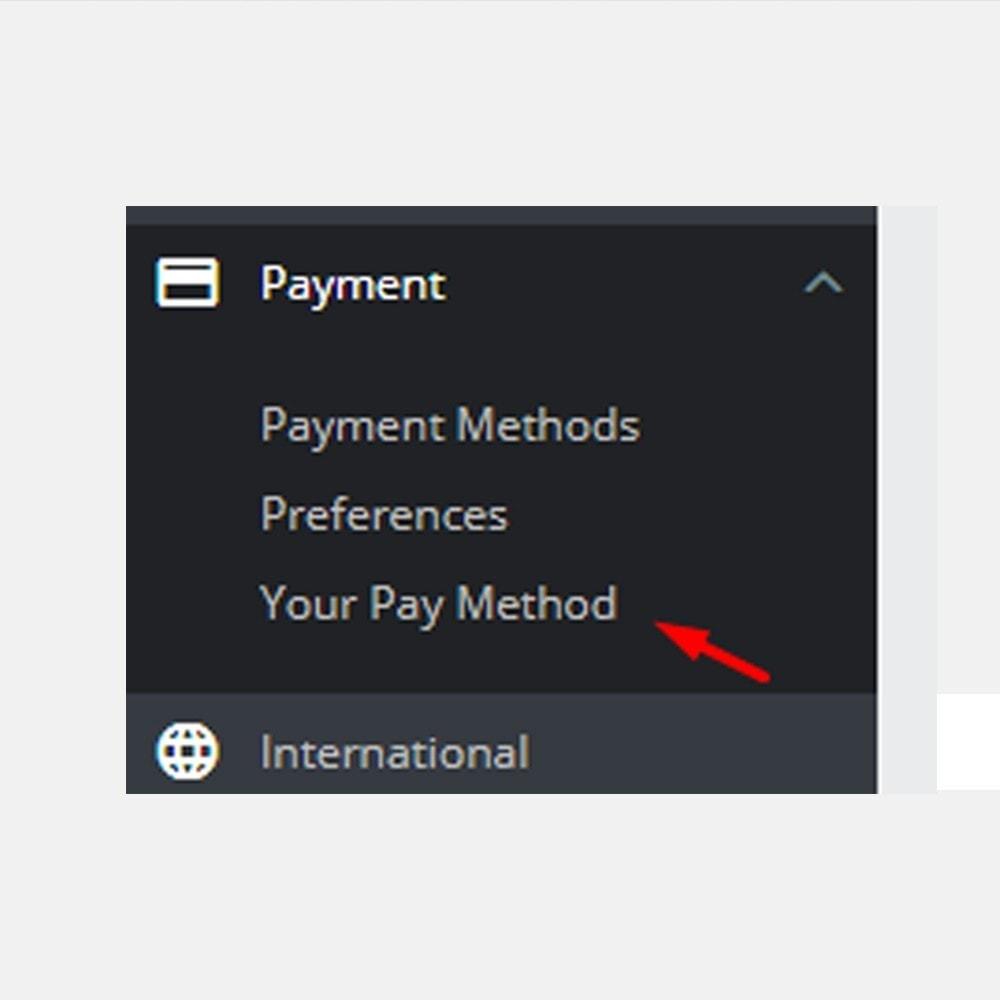module - Альтернативных способов оплаты - Свой способ оплаты - 4