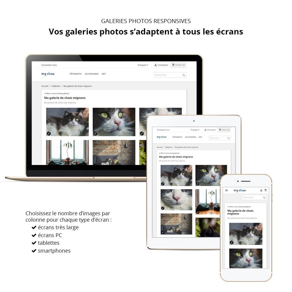 module - Slider & Gallerie - Responsive gallery photo - 1