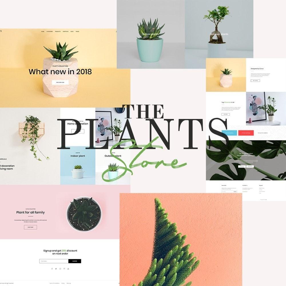 theme - Home & Garden - Best Indoor Plants Trending 2021 - 1