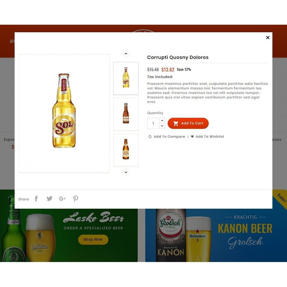 theme - Drink & Wine - Beer Pub & Drinks - 8