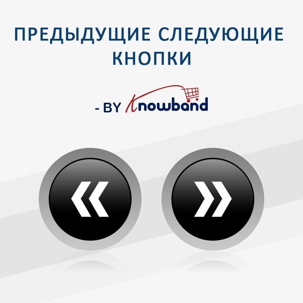 module - Инструменты навигации - Previous Next buttons on product page - 1