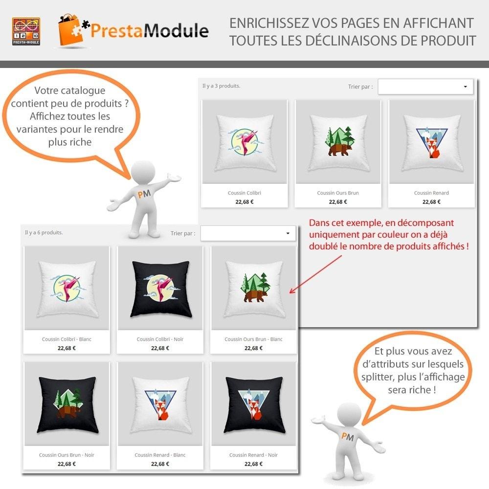 module - Déclinaisons & Personnalisation de produits - Products by Attributes: Afficher déclinaisons-attributs - 4