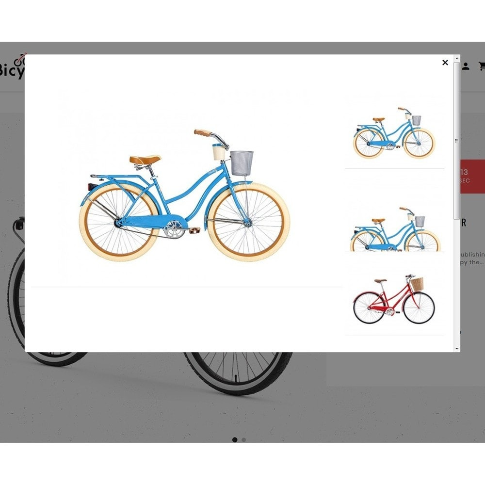 theme - Sport, Loisirs & Voyage - Bicycle Shop - 8
