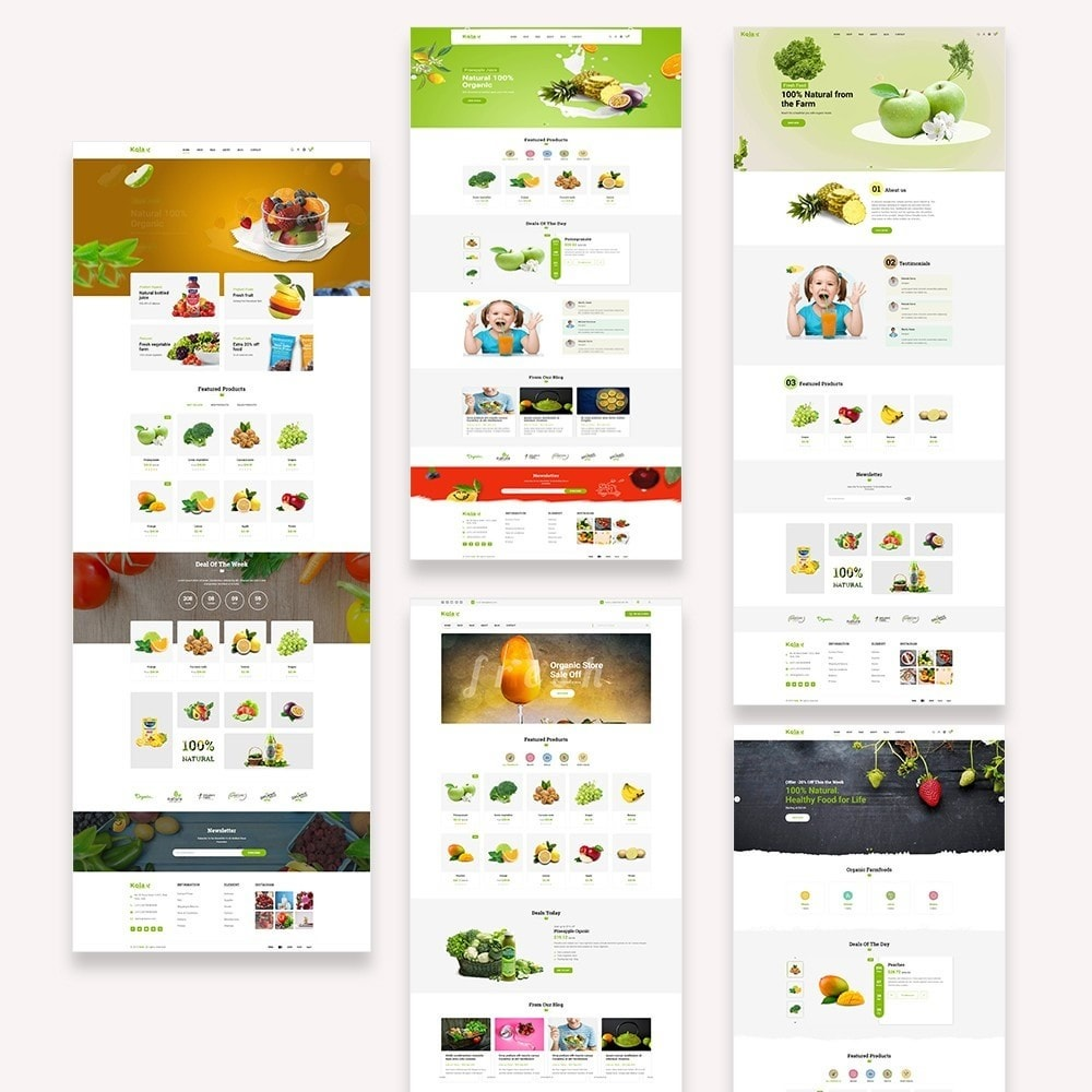 theme - Lebensmittel & Restaurants - Kola – Organic & Food Store - 2