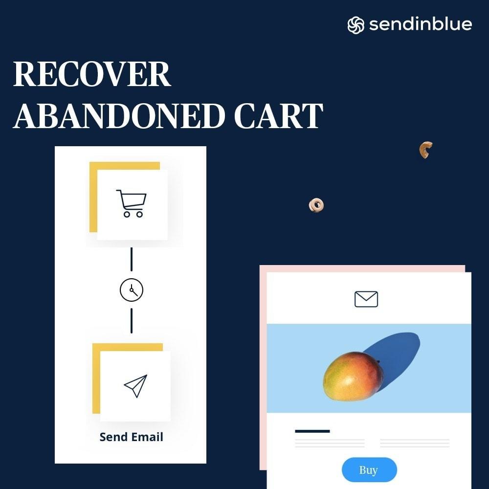 module - Boletim informativo & SMS - Sendinblue - Email Marketing e mais! - 4