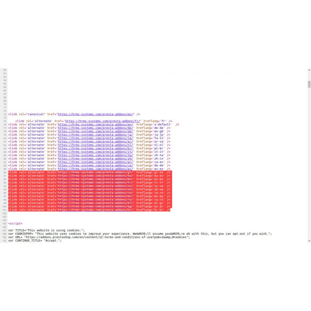 module - SEO (Posicionamiento en buscadores) - Hreflang y etiquetas canónicas en todas las páginas - 4