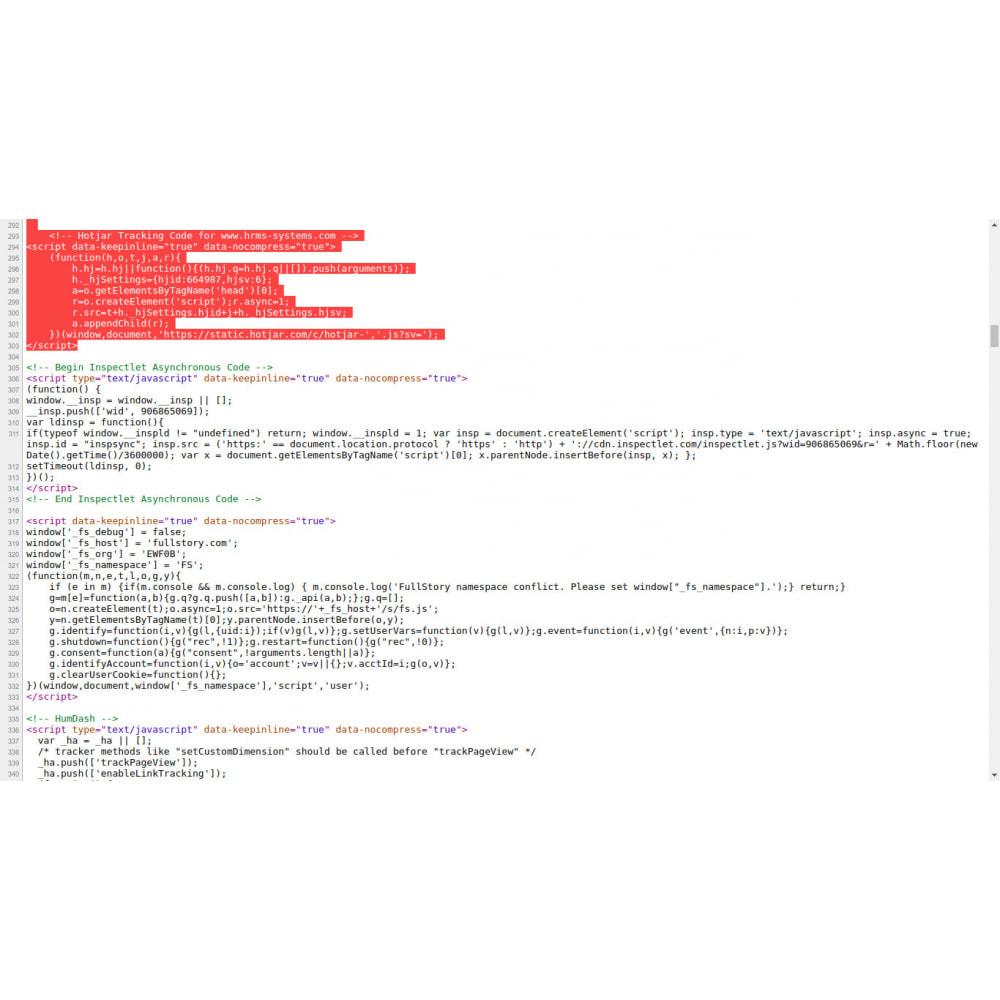 module - SEO (Indicizzazione naturale) - HTML personalizzato, CSS, JS su pagine selezionate - 1