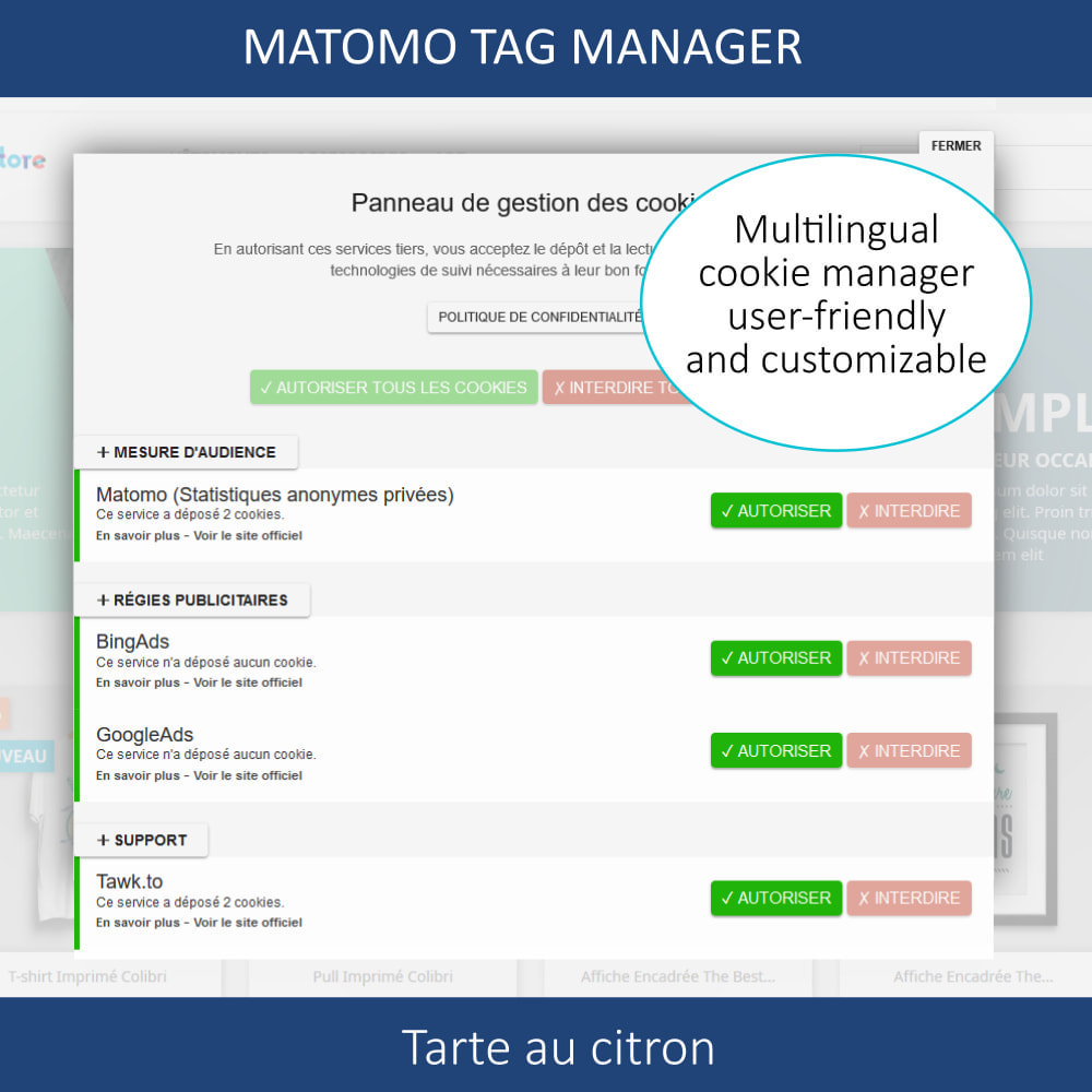 module - Администрация - Matomo tag manager + Cookie manager & banner (GDPR) - 3