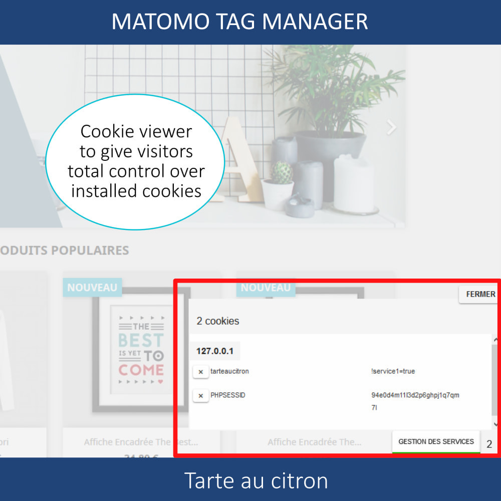 module - Администрация - Matomo tag manager + Cookie manager & banner (GDPR) - 4