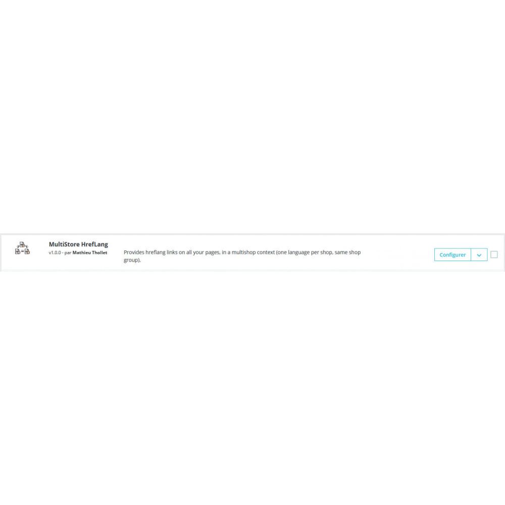 module - SEO (Posicionamiento en buscadores) - MultiStore HrefLang - 1