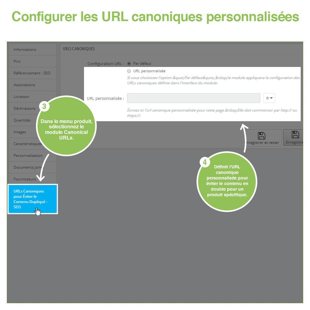 module - URL & Redirections - URL canoniques pour éviter les doublons - SEO - 11