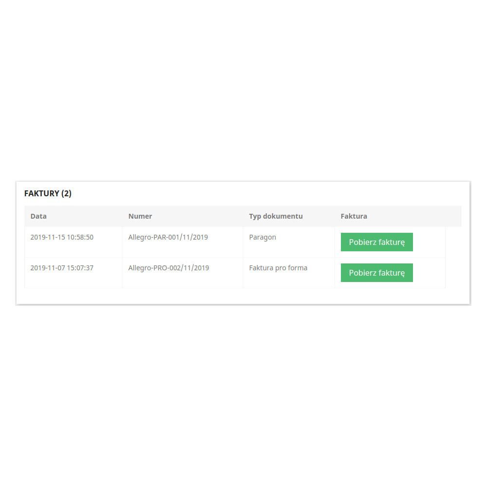 module - Księgowość & Fakturowania - Faktury BizIn - 4