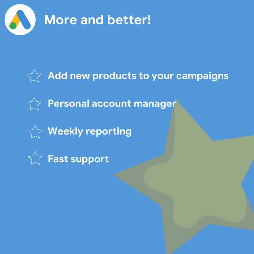module - SEA SEM (paid advertising) & Affiliation Platforms - Clever Ecommerce for Google Ads & Google Shopping - 4