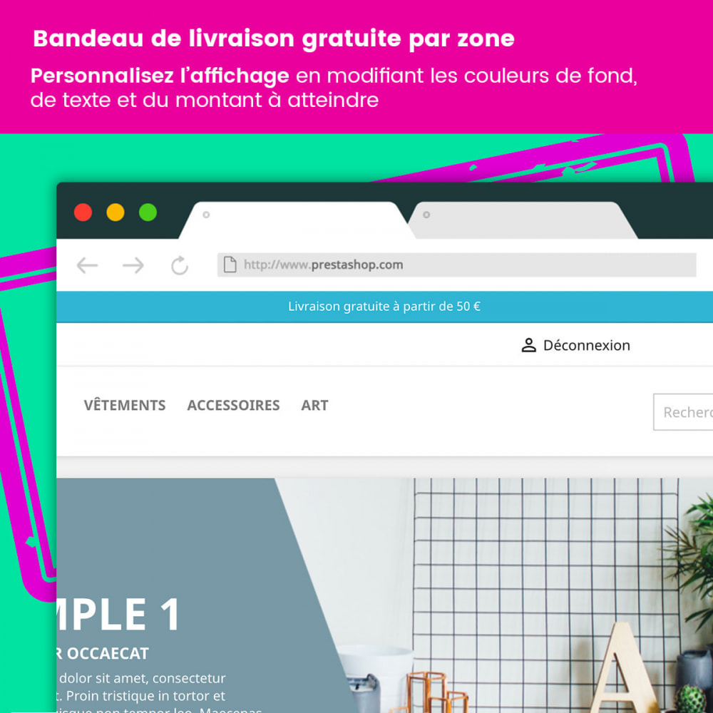 module - Blocchi, Schede & Banner - Free delivery banner by zone - 3