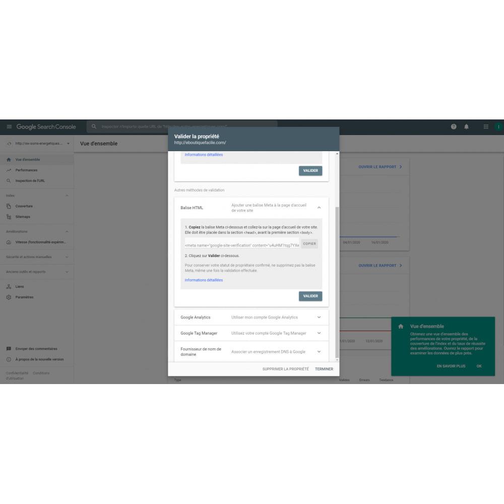 module - SEO - google webmaster tool - 2