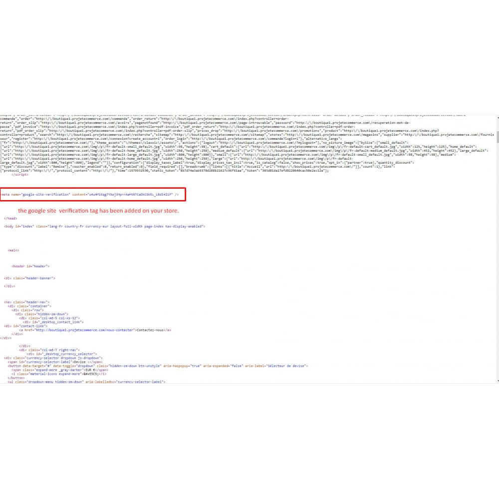 module - SEO - google webmaster tool - 4