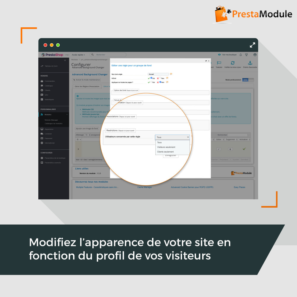 module - Personnalisation de Page - Advanced Background Changer - 5