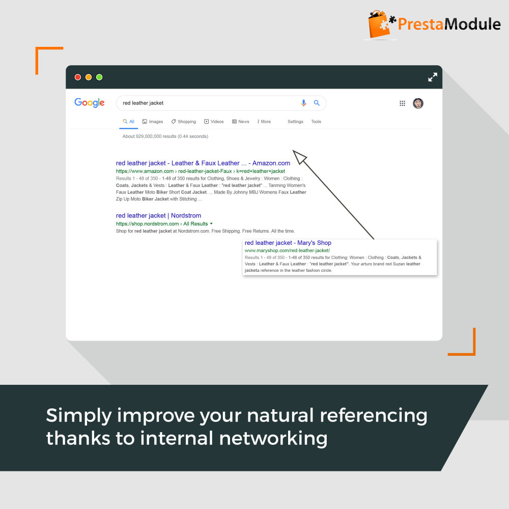 module - SEO (Referenciamento natural) - SEO Internal Linking PRO - ligações internas para SEO - 1