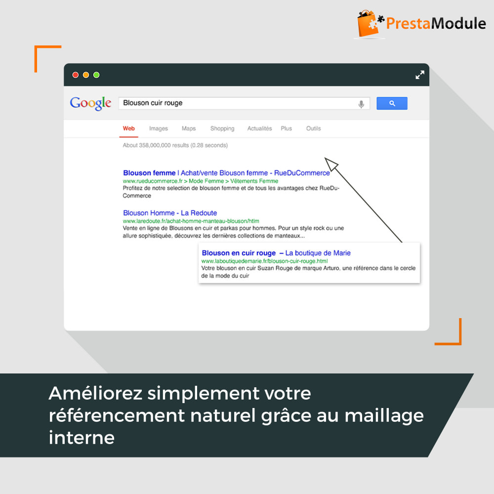module - SEO (référencement naturel) - SEO Internal Linking PRO - 1