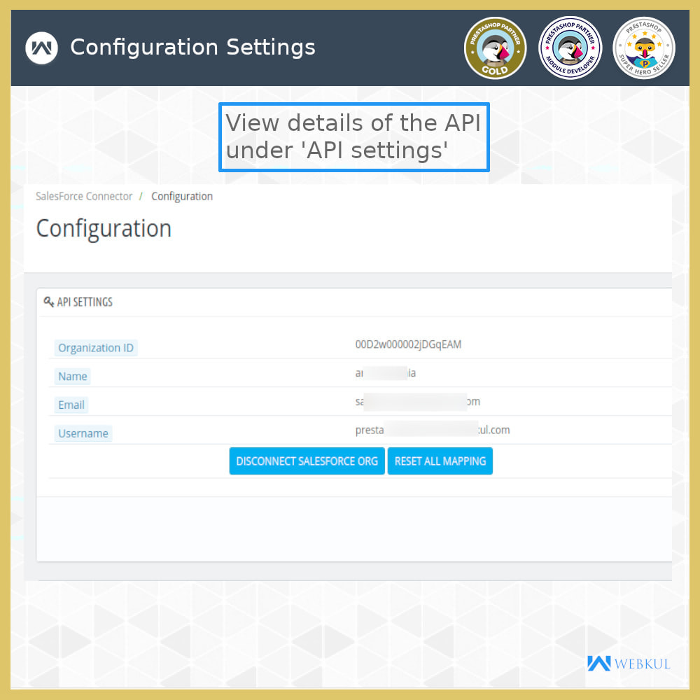 module - Third-party Data Integration (CRM, ERP...) - Salesforce Connector - 9