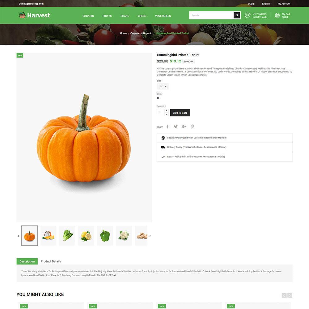 theme - Cibo & Ristorazione - Harvest Vegetables - Negozio di frutta fresca - 6