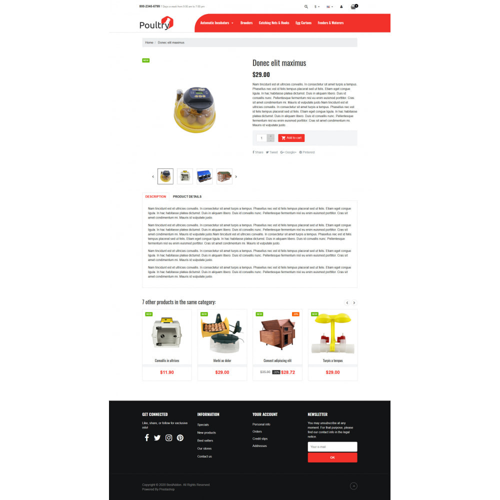 theme - Дом и сад - VP_Poultry - Page Builder - 4