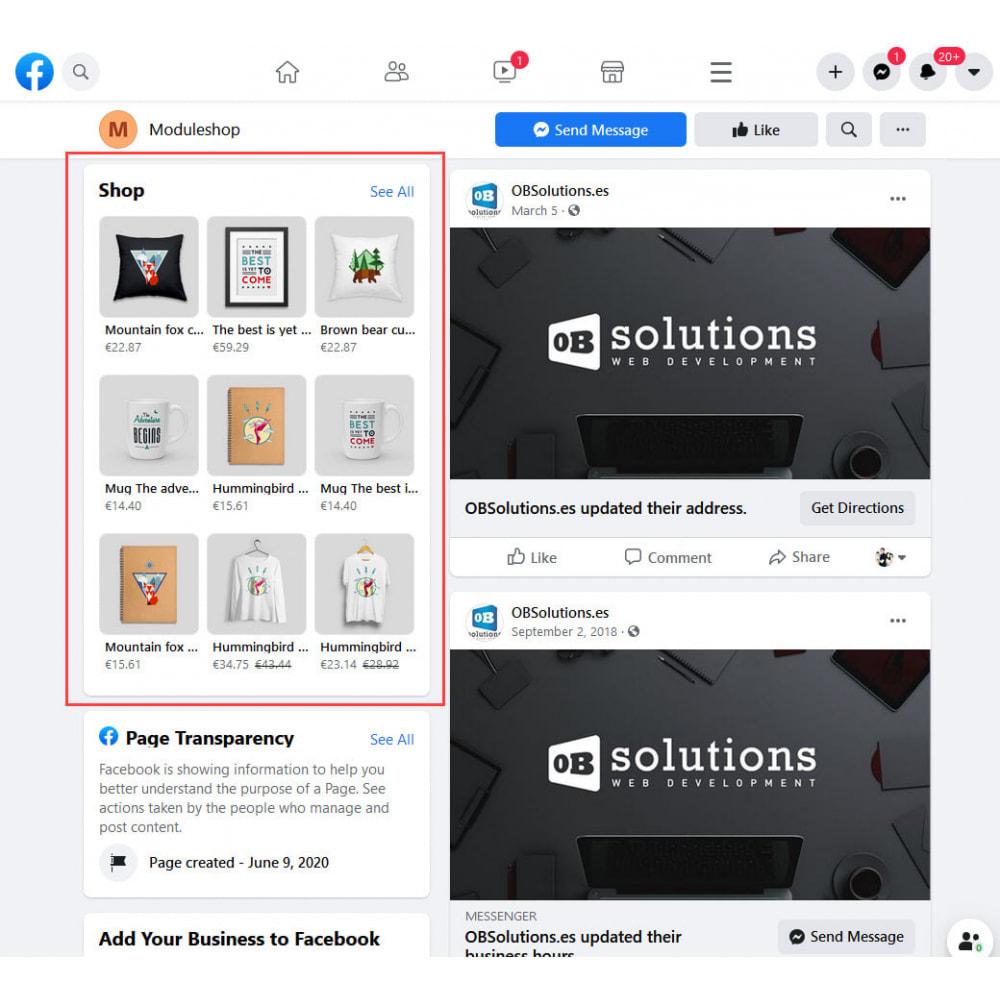 module - Produkten op Facebook & sociale netwerken - Social Networks Shop Catalog Importer - 3