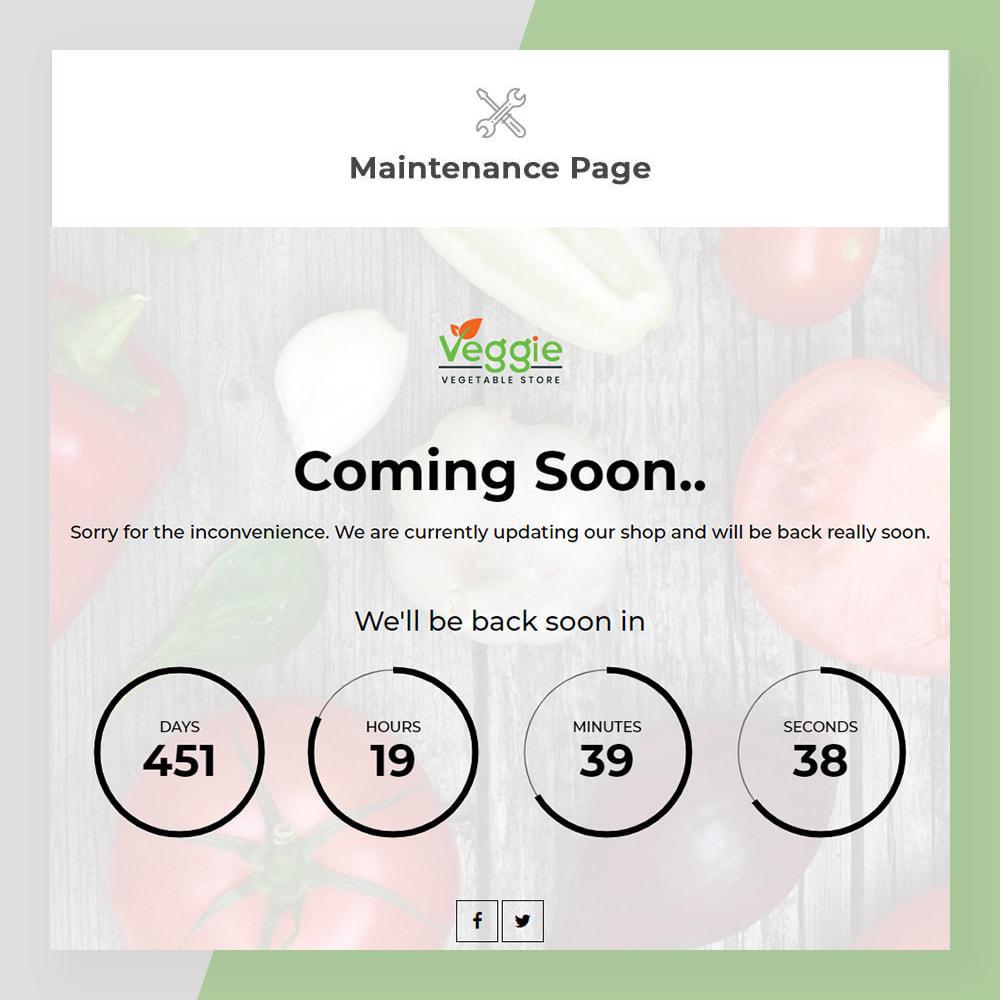 theme - Żywność & Restauracje - Veggie - fresh Organic Food Store - 10