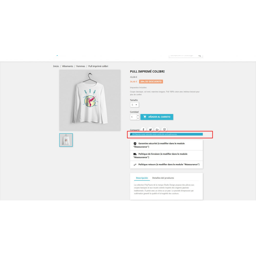 module - Informaciones adicionales y Pestañas - Visitor en la página del producto - 2