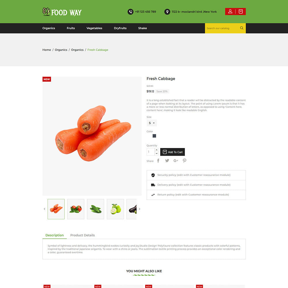theme - Alimentation & Restauration - Organic Food  - Vegetable Fruit Beans Store - 5