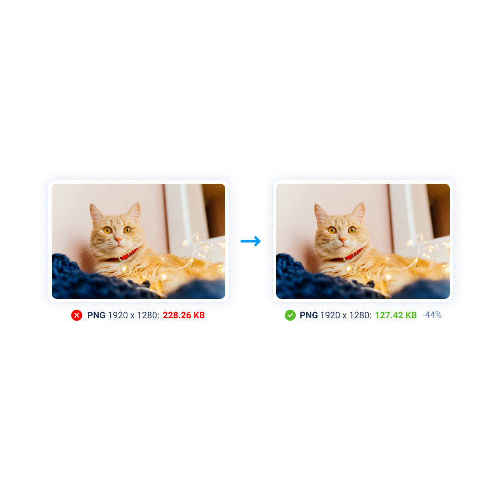 module - Visual Products - Image Compress with Squeezeimg + Convert to webp, jp2 - 21