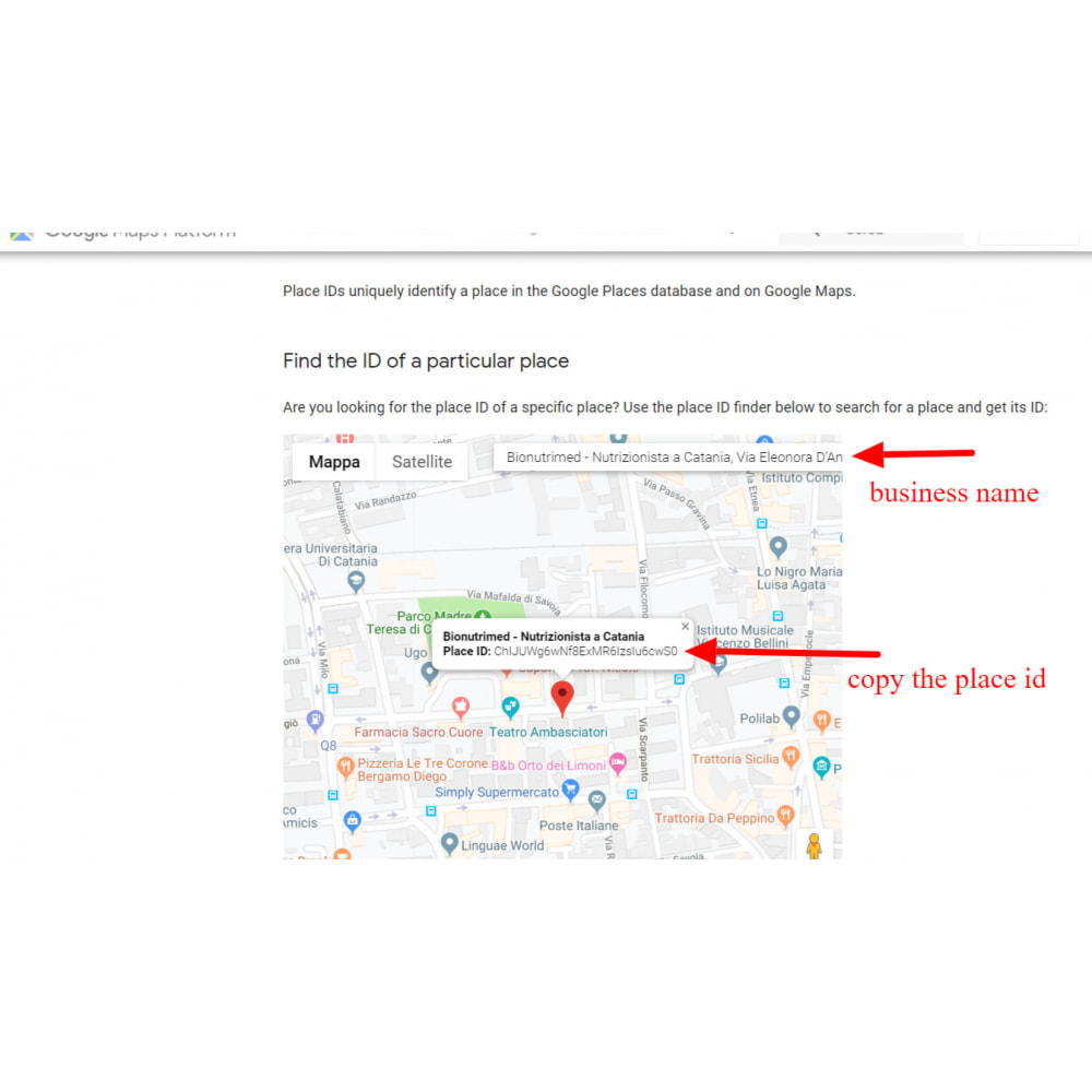 module - Recensioni clienti - Incorpora le recensioni di Google My Business - 9