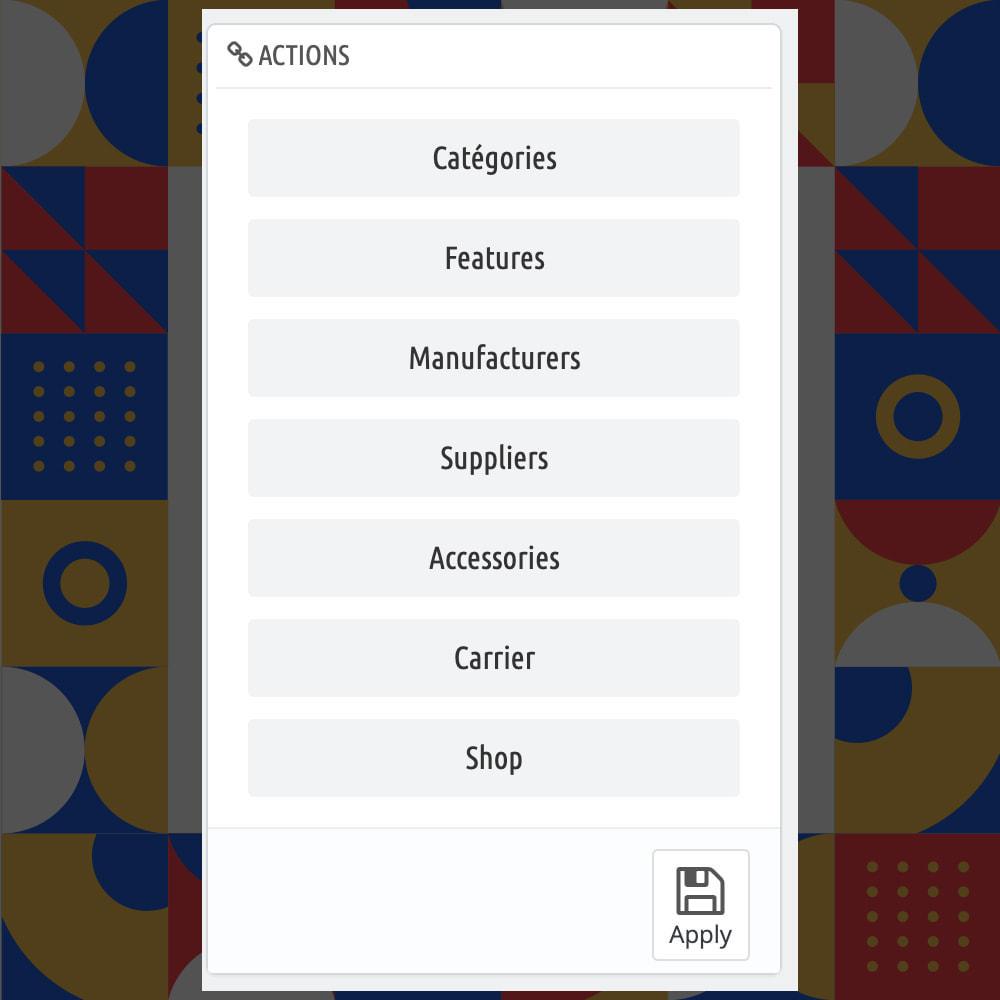 module - Informaciones adicionales y Pestañas - Bulk Assign Products to - 3