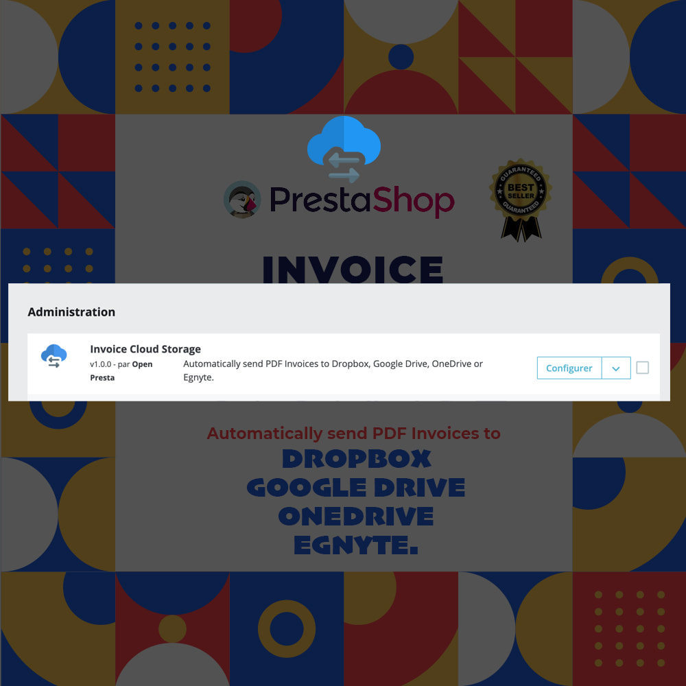 module - Accounting & Invoicing - Invoice Cloud Storage - 4