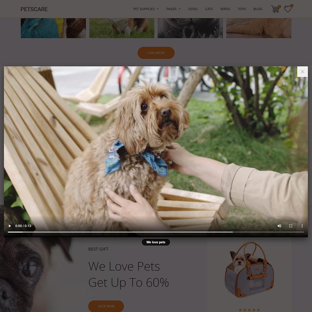 theme - Animales y Mascotas - PetsCare - Tienda de Mascotas - 8