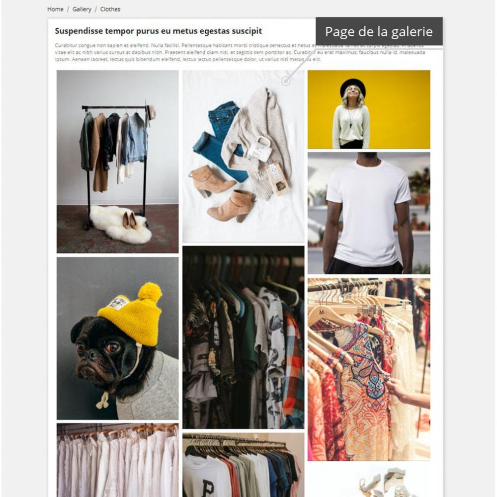 module - Sliders & Galeries - Galerie professionnelles ( image gallery ) - 3