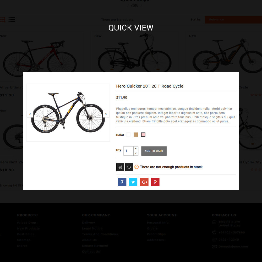 theme - Desporto, Actividades & Viagens - Bike Ryder - Bike Shop & Bicycle Rental Shop - 4