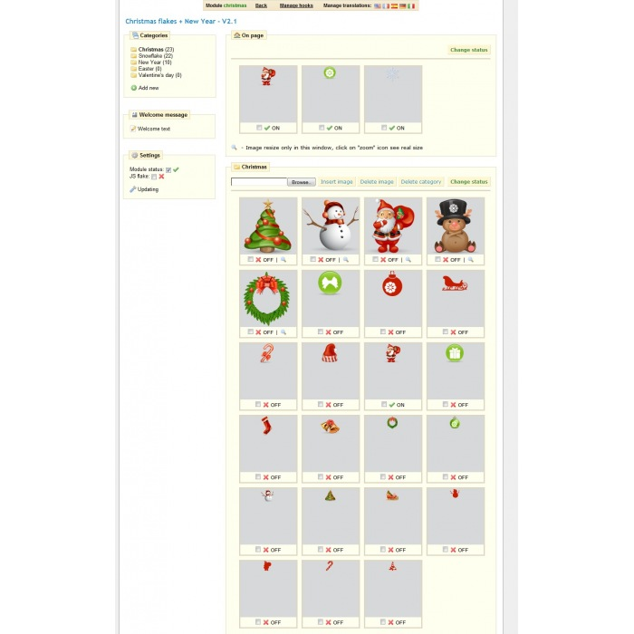 module - Personnalisation de Page - Christmas flakes + New Year - 1