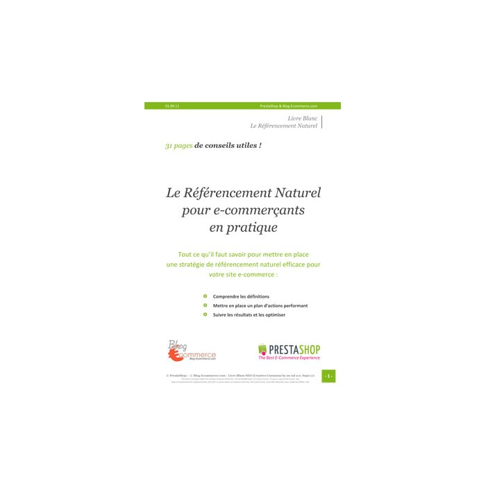 other - Acompanhamento - Guide pratique du référencement naturel - SEO - 1