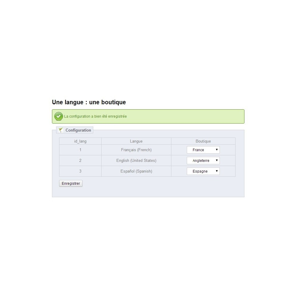 module - SEO (Pozycjonowanie naturalne) - A language: a shop - 3