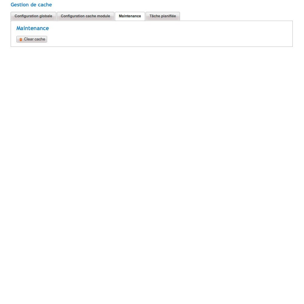 module - Performance du Site - Cache Manager - 5