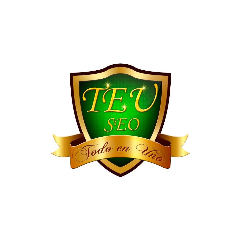 module - SEO (Posicionamiento en buscadores) - TEU SEO - Todo en uno - 2